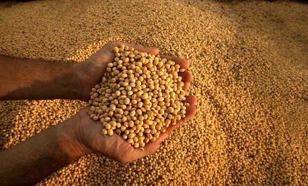 Comercialización. En el ámbito local la venta de soja continúa muy demorada. Los productores retienen granos a la espera de mejores precios.