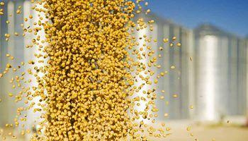El precio de la soja, el trigo y el maíz no encuentra techo en Rosario ante la falta de oferta
