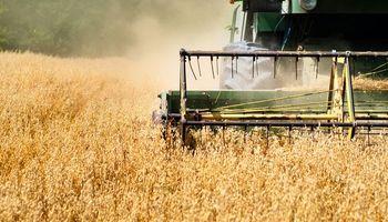 Media sanción en Paraguay a retención del 10% a la soja