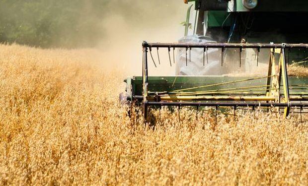 Media sanción en Paraguay a retención del 10% a la soja.