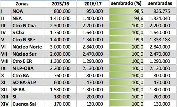 Siembra de soja registra un avance del 99,5%.