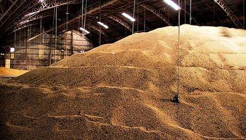 Malos augurios del USDA para el precio futuro de los granos