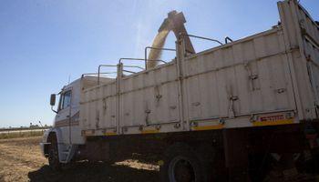 ¿Descargar sin bajar del camión? Dos plataformas que buscan revolucionar la logística de la cosecha