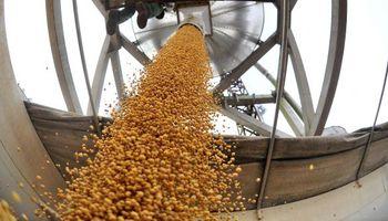 Sudamérica hace retroceder la soja en Chicago