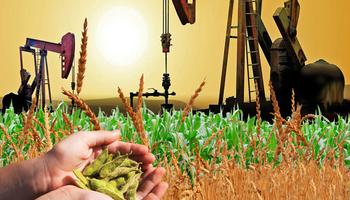 """Soja, trigo y maíz vs petróleo: por qué este año """"la situación es distinta"""""""