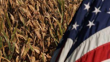 El dato: hay menos soja y maíz de lo que se creía en Estados Unidos
