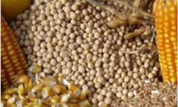 Lanworth eleva pronóstico para cosecha de soja y maíz en EEUU