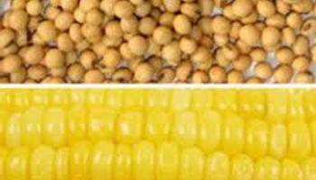 Modificaron la norma que determina la registración obligatoria de operaciones de granos