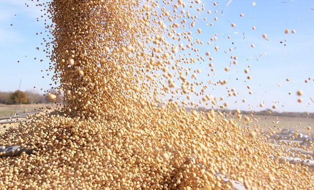 Reducen el financiamiento al campo para que venda la soja almacenada