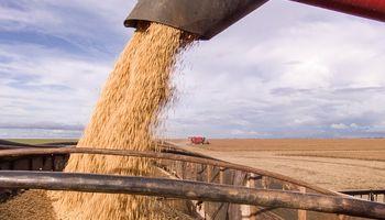 Brasil espera obtener una cosecha récord con 248 millones de toneladas de granos