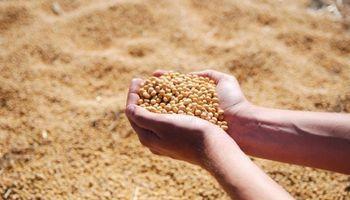 China se comprometió a comprar 10 millones de toneladas de soja a Estados Unidos