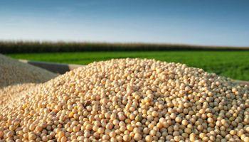 La soja se vende a un ritmo superior al millón de toneladas por semana