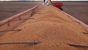 Comenzó la cosecha de soja en Brasil y se esperan más de 123 millones de toneladas
