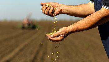 Regresan los temores por el impacto de La Niña en Sudamérica y hay fuertes subas para la soja