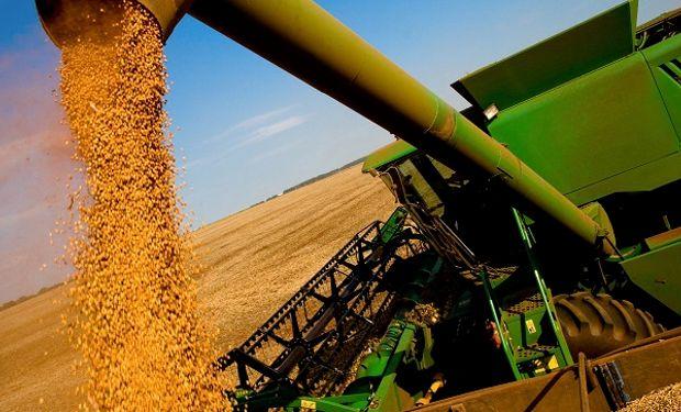 La soja cerró con fuertes subas en Chicago y en Rosario repuntó el volumen de ventas