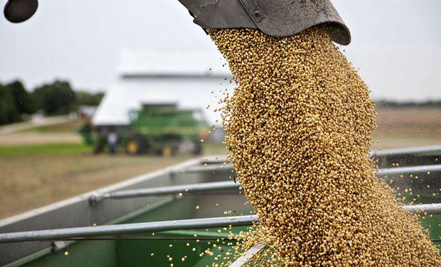 Brasil se convirtió en el mayor proveedor de soja de China tras la escalada en la guerra comercial con Estados Unidos.