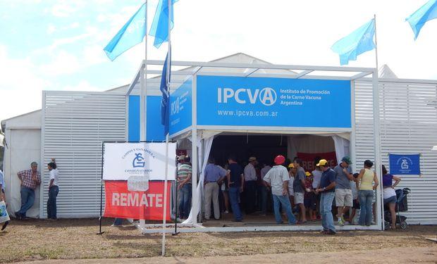 El IPCVA y la Asociación Forestal Argentina firmarán un convenio para impulsar la producción de los sistemas silvopastoriles o foresto-ganaderos.