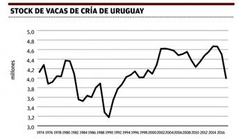 Uruguay: población de vacunos caerá este año y el próximo