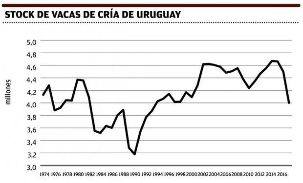 El stock vacuno de Uruguay bajará este año y en 2017; caerán categorías claves.