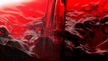 Positivo: las razones detrás de la reducción del sobre stock vínico