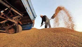"China, ante un ""exceso"" de oferta de granos"