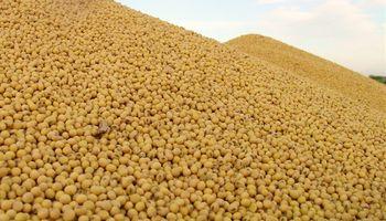 Fuerte aumento en los stocks finales de soja