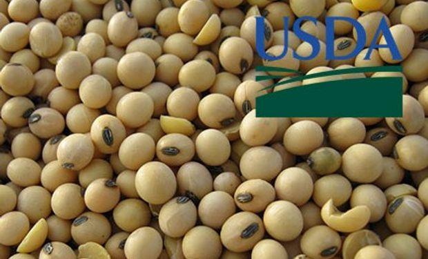 Informe USDA: Stocks trimestrales y producción de trigo.