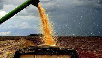 Alza de combustibles impacta de lleno en el agro
