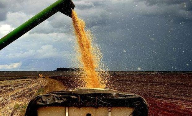 El alza en los precios del gasoil repercutirá sobre el sector agropecuario, dado que es un insumo clave para el transporte y las tareas en torno a la producción.