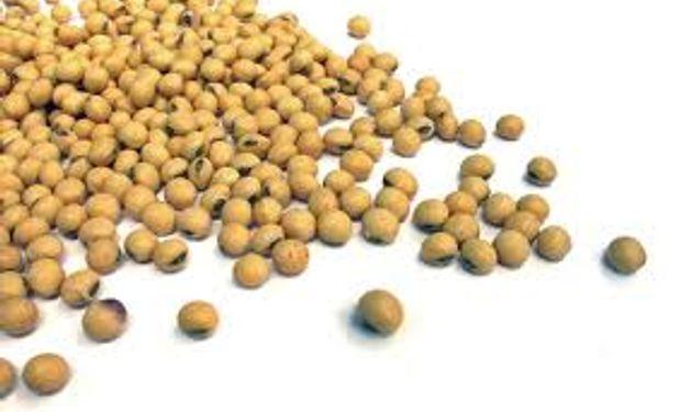 La soja disponible cerró la semana con subas