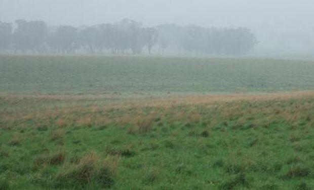 Las lluvias en el sudeste boanerense.