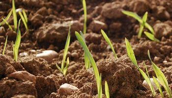 Córdoba realizó aportes para tres consorcios que conservan 120 mil hectáreas de suelo