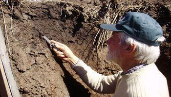 La microbiología del suelo se presenta como un actor principal que revoluciona la producción agropecuaria