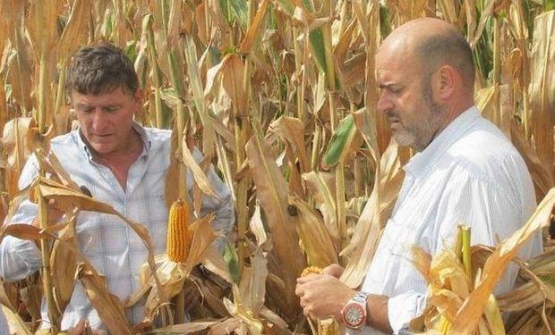 Huarte (der.) sacó 19.000 kilos de maíz en un lote de Alcorta en el sur de Santa Fe.