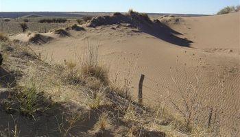 El suelo, un recurso para conservar
