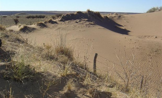 En la Argentina existen 105 millones de hectáreas erosionadas.