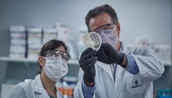 Aprueban el suero equino hiperinmune como tratamiento para pacientes con coronavirus