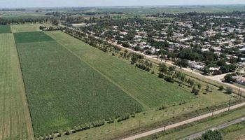 Santa Fe propone una ley para potenciar la agricultura periurbana y evitar una urbanización desordenada