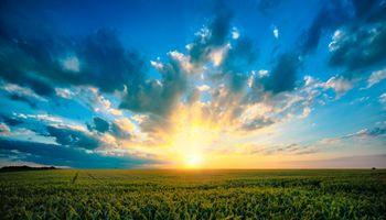 La sustentabilidad integral del sistema agropecuario