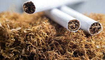 Por noveno año consecutivo cayó el consumo de cigarrillos, mientras que la producción de tabaco creció