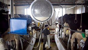 Cooperativas lácteas piden retenciones cero y ser incluidas en el decreto