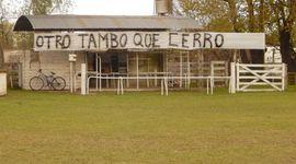 """""""Leche cortada"""": los 4 principales reclamos de los tamberos"""