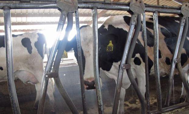 Las compensaciones correspondientes a la producción de marzo alcanzan a 890 productores, por $ 11,3 millones, según la resolución 130 de la Secretaría de Comercio que se publicó ayer en el Boletín Oficial.