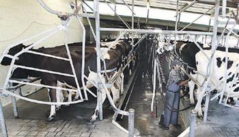 El precio de los lácteos es una preocupación permanente en Uruguay