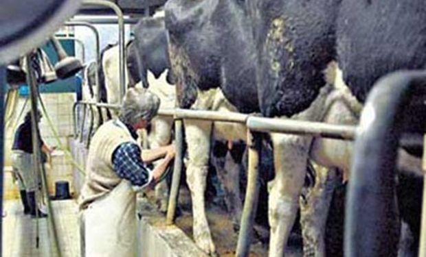El propósito es mejorar el precio que reciben los productores.