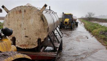 Tamberos bajo presión: el factor clave y también descuidado de la lechería