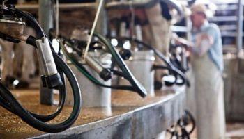 Santa Fe lanza una línea de préstamos de asistencia a tamberos