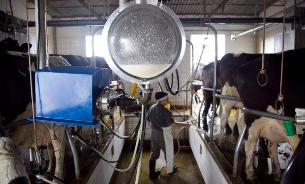 La producción de leche creció en junio un 5,7 % en relación a mayo