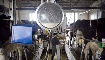 Hortalizas, tabaco, ovinos y lechería: los sectores más afectados de las economías regionales