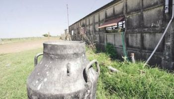 Agricultura dio $ 11 millones al sector lácteo